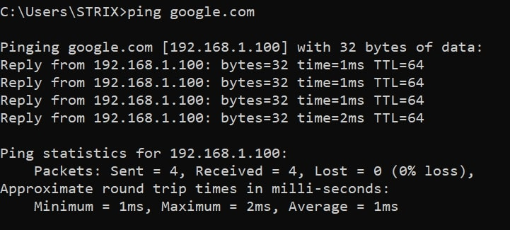 Pinging google.com when dns spoofed