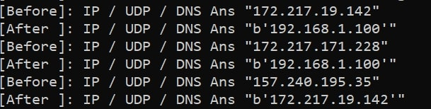 DNS Spoof Output